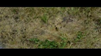 Candyman - Alternate Trailer 1