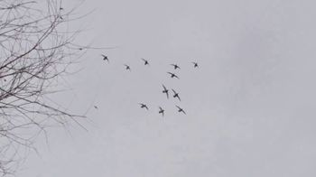 Prairie Rock TV Spot, 'Duck Season' - Thumbnail 8
