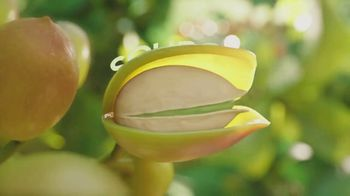 Wonderful Pistachios TV Spot, 'The Original Plant-Based Protein'