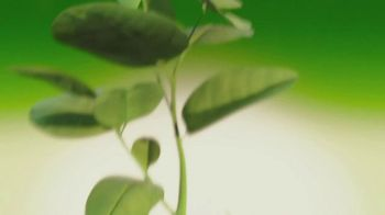 Wonderful Pistachios TV Spot, 'The Original Plant-Based Protein' - Thumbnail 3