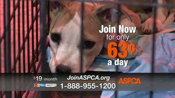 ASPCA TV Spot, 'Darkest Places' Featuring Eric McCormack - Thumbnail 6
