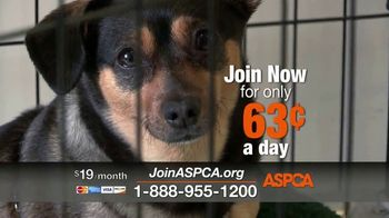 ASPCA TV Spot, 'Darkest Places' Featuring Eric McCormack - 125 commercial airings