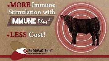 Endovac Animal Health ENDOVAC-Beef TV Spot - Thumbnail 8