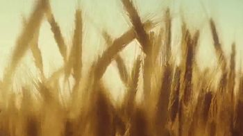 Michelob ULTRA Pure Gold TV Spot, 'Listen' - Thumbnail 5