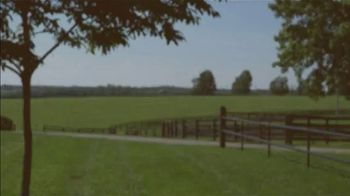 Claiborne Farm TV Spot, 'RunHappy: Brilliance' - Thumbnail 10