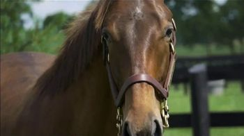 Claiborne Farm TV Spot, 'RunHappy: Brilliance' - Thumbnail 6