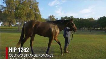 Claiborne Farm OBS Spring Sale TV Spot, 'Colts' - Thumbnail 4