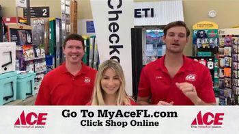 ACE Hardware TV Spot, 'Shop Online' - Thumbnail 8