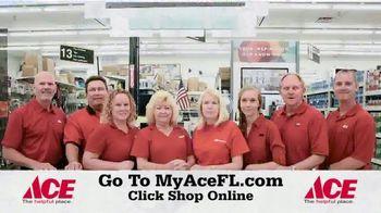 ACE Hardware TV Spot, 'Shop Online' - Thumbnail 9