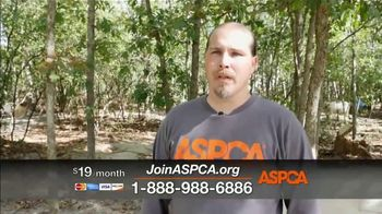 ASPCA TV Spot, 'Save Animals from the Summer Heat' - Thumbnail 6