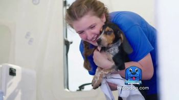 HydroDog TV Spot, 'Dedicating Our Lives to Animal Rescue: Own a Big Blue Dog' - Thumbnail 7