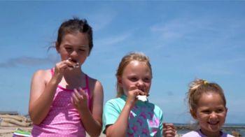 Hood TV Spot, 'National Ice Cream Sandwich Day'