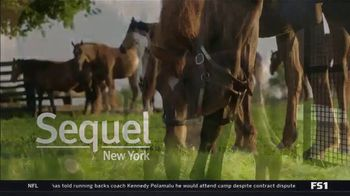 New York Thoroughbred Breeding and Development Fund TV Spot, \'Triple Crown Dreams\'