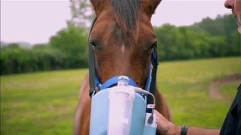 BTN LiveBIG TV Spot, 'Purdue Vets Help Horses Breathe Easier' - Thumbnail 7
