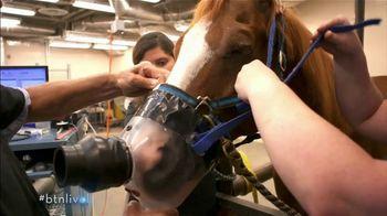 BTN LiveBIG TV Spot, 'Purdue Vets Help Horses Breathe Easier' - Thumbnail 8