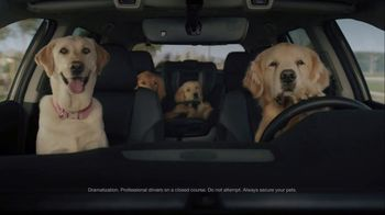 Subaru A Lot to Love Event TV Spot, 'Dog Tested: No Pets Allowed' [T2] - Thumbnail 1