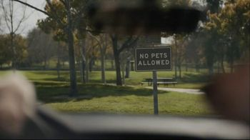 Subaru A Lot to Love Event TV Spot, 'Dog Tested: No Pets Allowed' [T2] - Thumbnail 4