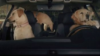 Subaru A Lot to Love Event TV Spot, 'Dog Tested: No Pets Allowed' [T2] - Thumbnail 5