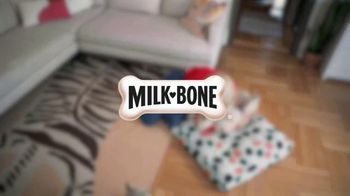 Milk-Bone TV Spot, 'nick@nite: National Dog Month' Featuring Molly Bernard - Thumbnail 10