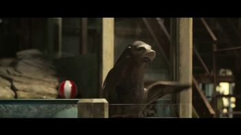 Disney+ TV Spot, 'The One and Only Ivan' [Spanish] - Thumbnail 4