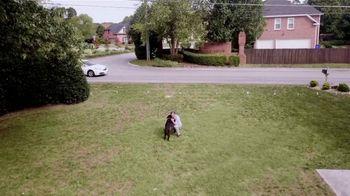 Invisible Fence Boundary Plus TV Spot, 'Reassurance' - Thumbnail 8
