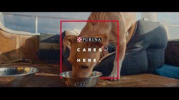 Purina TV Spot, 'Every Detail' - Thumbnail 7