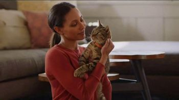 Purina Beyond TV Spot, 'You Know Them' - Thumbnail 2