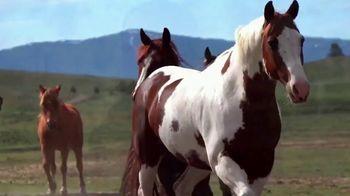 Mason & Morse Ranch Company TV Spot, 'We Live It to Know It' - Thumbnail 6