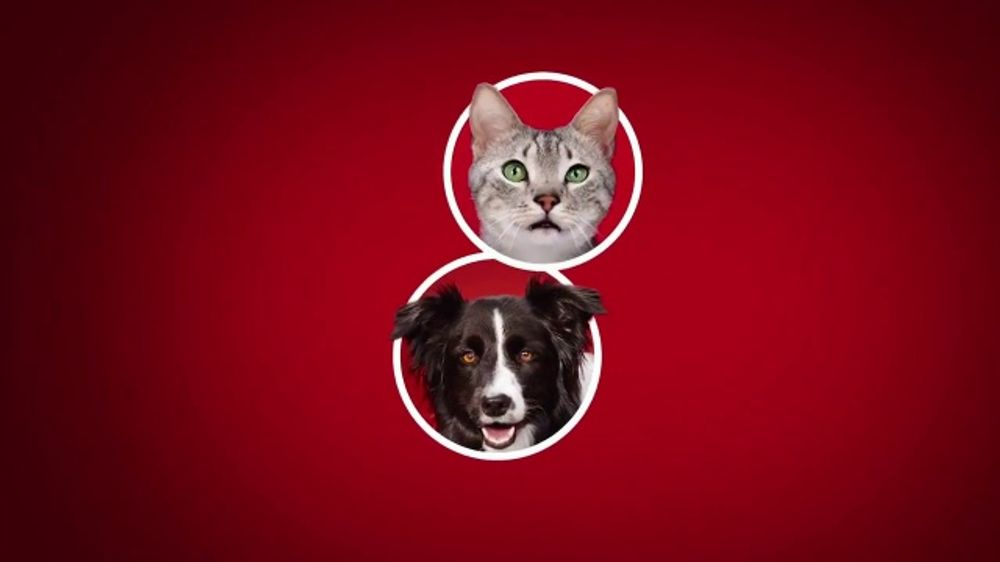 Purina ONE TV Commercial, '28 Days: Protein-Rich Wet Food'