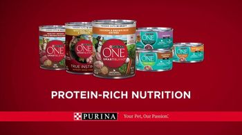 Purina ONE TV Spot, '28 Days: Protein-Rich Wet Food' - Thumbnail 10