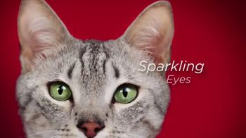 Purina ONE TV Spot, '28 Days: Protein-Rich Wet Food' - Thumbnail 7