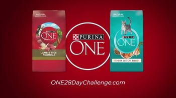 Purina ONE TV Spot, '28 Days: Protein-Rich Wet Food' - Thumbnail 8