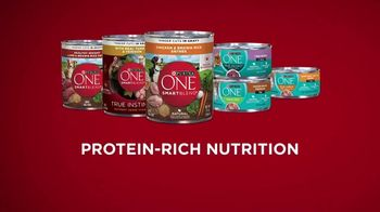 Purina ONE TV Spot, '28 Days: Protein-Rich Wet Food' - Thumbnail 9