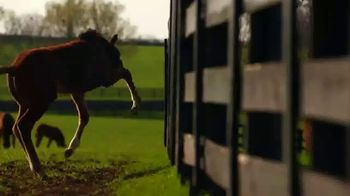 Breeders' Cup TV Spot, '2020 World Championships Tickets On Sale' - Thumbnail 5