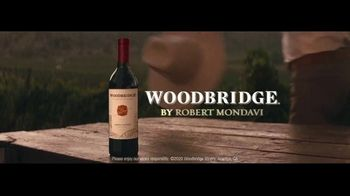 Woodbridge TV Spot, 'Every American Table' Song by The Hollies - Thumbnail 6