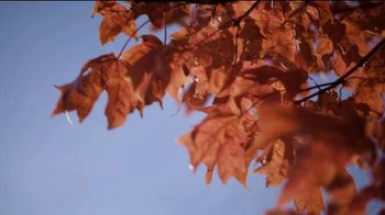 Arbor Day Foundation TV Spot, 'Putting Out the Call' - Thumbnail 5