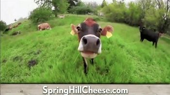 Petaluma Creamery TV Spot, 'Happy Cows: $10 Off' - Thumbnail 2
