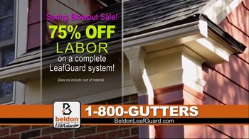 Beldon LeafGuard Spring Blowout Sale TV Spot, 'Flexible Installation Schedule and Free Leaf Blower'