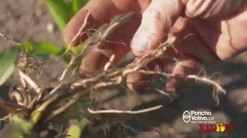 BASF Poncho Votivo 2.0 TV Spot, 'Challenging Year' - Thumbnail 3