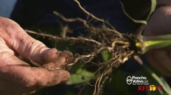 BASF Poncho Votivo 2.0 TV Spot, 'Challenging Year' - Thumbnail 4