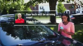 Safelite Auto Glass TV Spot, 'Auto Glass Damage' - Thumbnail 4