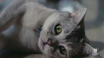 Hill's Pet Nutrition TV Spot, 'Second Chances: Nutrition' - Thumbnail 8