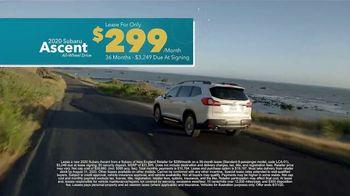 Subaru A Lot to Love Event TV Spot, 'Shop Online: Ascent' [T2] - Thumbnail 6