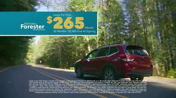 Subaru A Lot to Love Event TV Spot, 'Shop Online: Forester' [T2] - Thumbnail 6