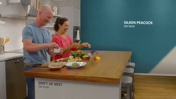 Sherwin-Williams TV Spot, 'Color ID: Feels Like Us' Featuring Ian Knauer, Kendra Thatcher - 26 commercial airings