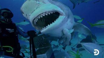 Oceana TV Spot, 'Shark Week: Need Our Help' Featuring Nina Dobrev - Thumbnail 2