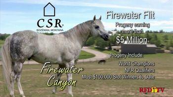 Copper Spring Ranch TV Spot, 'Performance Horse Breeding Program: Firewater Canyon' - Thumbnail 2