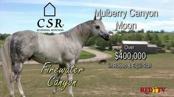 Copper Spring Ranch TV Spot, 'Performance Horse Breeding Program: Firewater Canyon' - Thumbnail 3