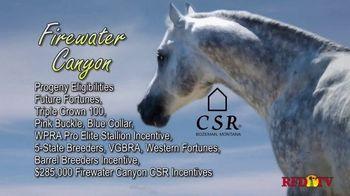 Copper Spring Ranch TV Spot, 'Performance Horse Breeding Program: Firewater Canyon' - Thumbnail 4