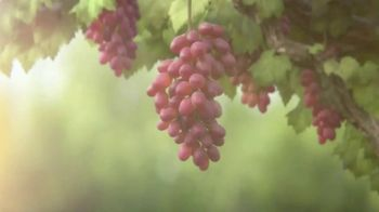 Grapes From California TV Spot, 'Grapes: The Healthy Snack' - Thumbnail 2